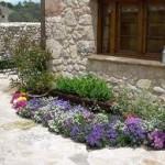 plantas jardines rusticos