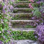 escaleras jardines rusticos