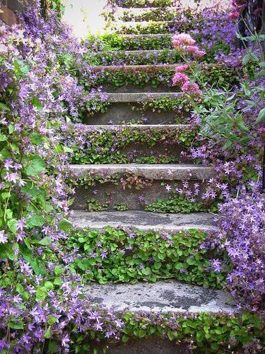 Jardines rusticos: ideas para hacer tu jardín rústico