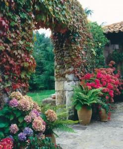 jardines rusticos 1