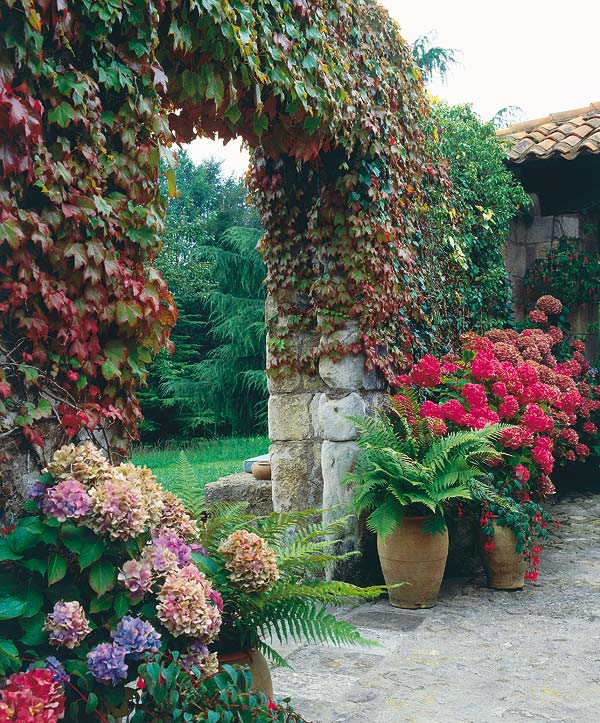 Jardines rusticos ideas para hacer tu jard n r stico for Ideas para decorar un jardin rustico