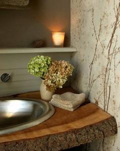 plantas en baños rusticos